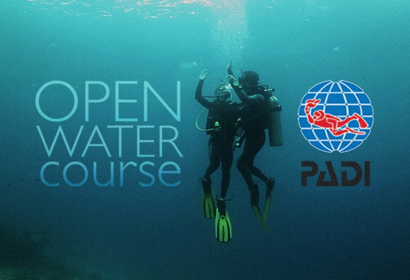 Curso de buceo PADI Honeymoon Special