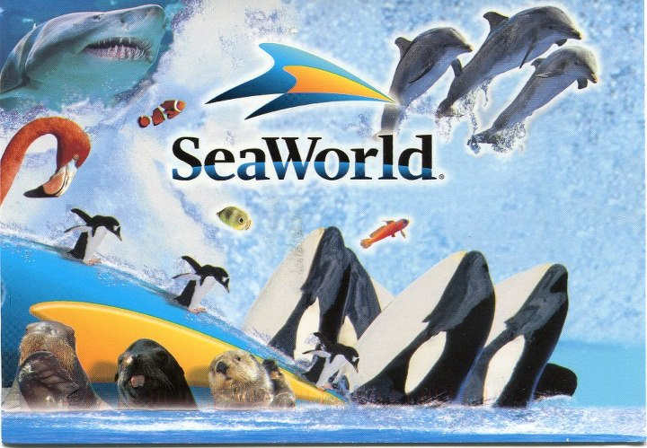 Entradas: Parque Sea World